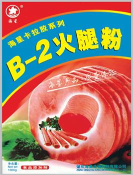 肉类滚揉型B-2